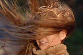 Петербург накроет штормовым ветром