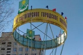 Воздушный шар, к которому прикасались геи, демонтировали в Светогорске