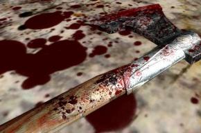 Изрубленного топором петербуржца нашли в доме на улице Беринга