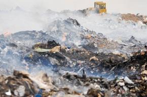 «Ростех» непланирует сжигать мусор вЛенобласти