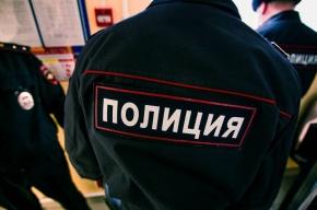 Жильца коммуналки в Купчино заподозрили в изнасиловании школьницы