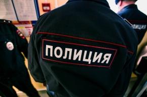 Заявление о групповом изнасиловании школьницы проверяет полиция Петербурга