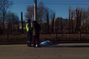 Очевидцы: человека насмерть сбили вПриморском районе