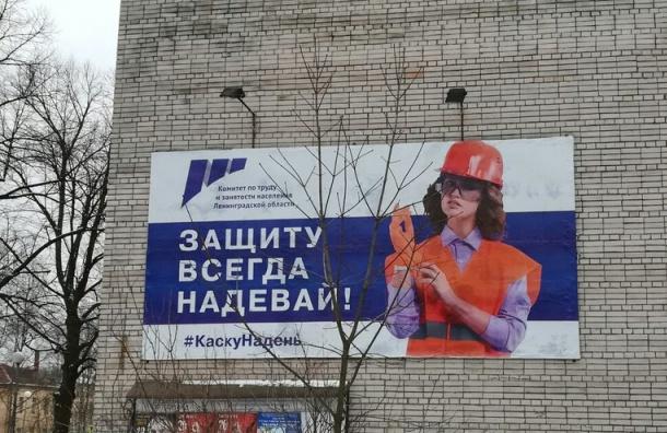 Защиту всегда надевай: вЛенобласти появились плакаты с«Дианой Шурыгиной»