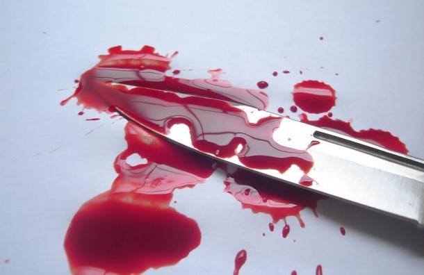 Женщина в Петербурге ударила кондуктора автобуса ножом в спину