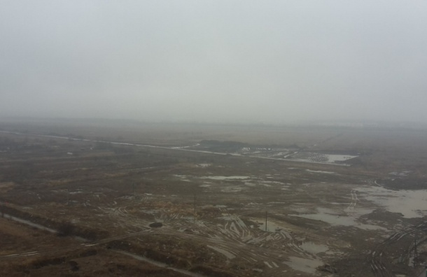 Густой туман накрыл улицы Петербурга