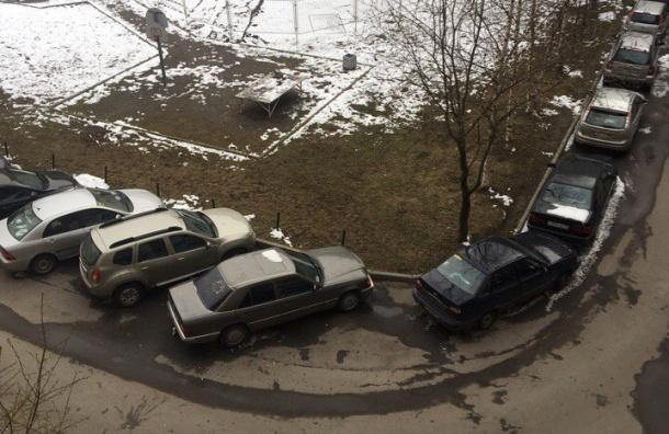 Очевидцы: Пасху в Купчино отпраздновали обстрелом куриными яйцами
