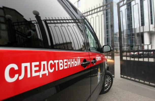 СК возбудило 8 дел по фактам сексуального насилия в детдоме Петербурга