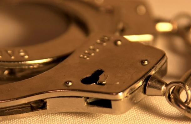 Суд арестовал подозреваемых визнасиловании детей издетдома Петербурга