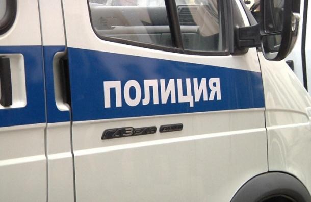 Две девочки попали в больницу после нападения насильников в Петербурге