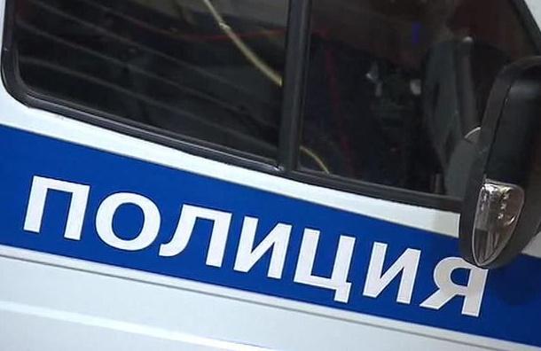 Организатора «прогулки оппозиции» задержали в центре Петербурга