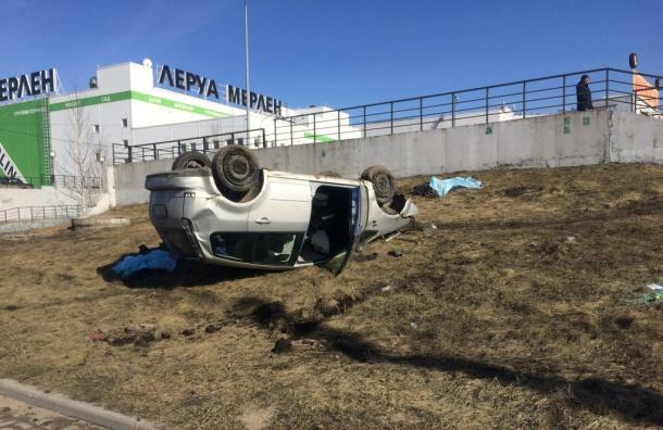 Водитель насмерть сбил двух пешеходов