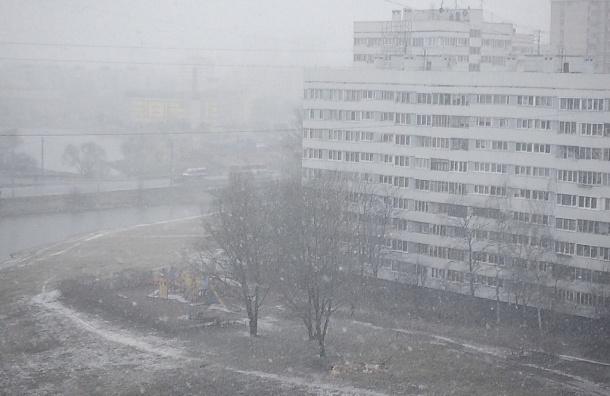 Сильный снегопад накрыл Петербург