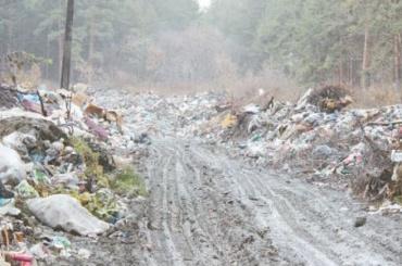 Активисты нашли вШушарах огромную свалку сопасным мусором