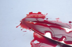 Жителя Рязанской области заподозрили в жестоком убийстве жены и трех сыновей