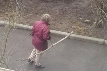 Бабушка избила дворника металлическим прутом в Ломоносове