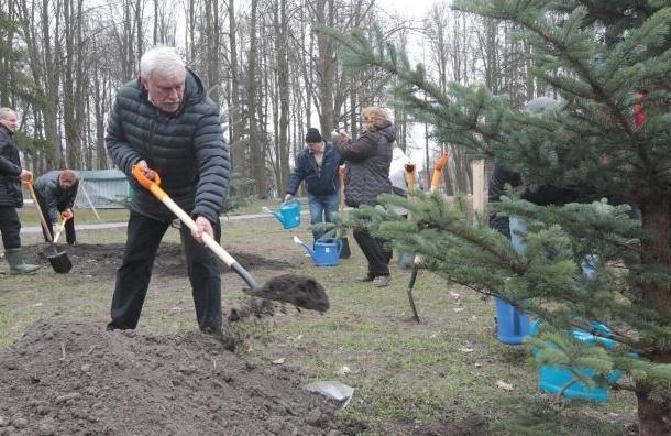 """Полтавченко благоустроил территорию около """"Зенит-Арены"""""""