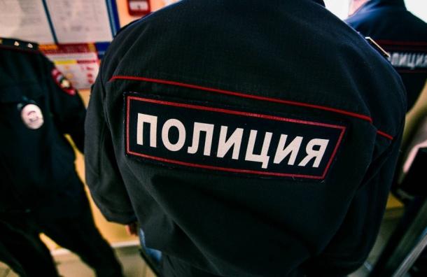 Развратника, напавшего на 10-летнюю девочку, ищут в Петербурге