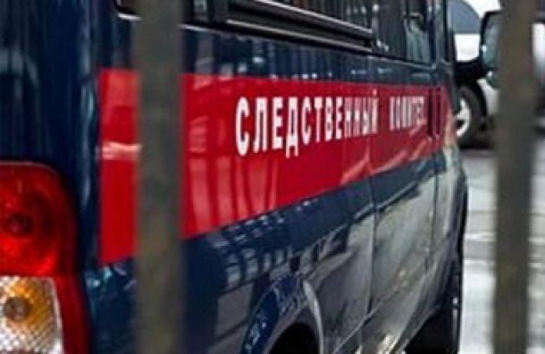СК: возможных пособников террористов задержали в Петербурге