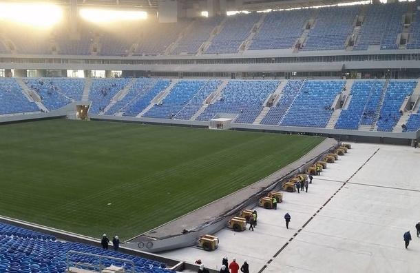 Помощник Луческу: поле «Зенит-Арены» хуже, чем у«аутсайдеров чемпионата Украины»