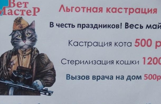Ветклиника по случаю майских праздников кастрирует котов со скидкой