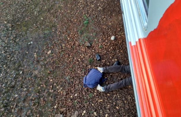 Очевидцы: мертвого пешехода нашли под поездом на«Купчино»