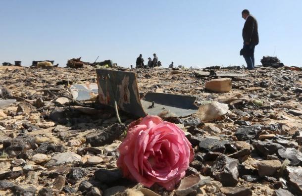 Неопознанные останки жертв крушения A321 захоронили в Петербурге