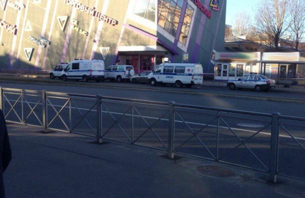 «Службы наместе»: напроспекте Елизарова нашли бесхозную сумку