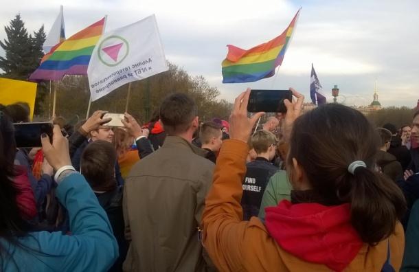 Около 200 ЛГБТ-активистов собрались на Марсовом поле