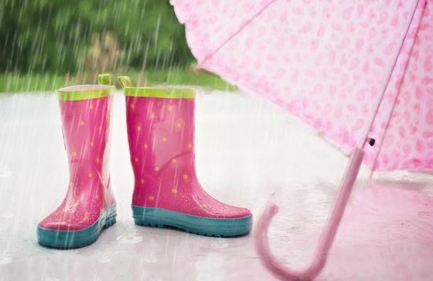 Лето в Петербурге начнется с дождей и похолодания