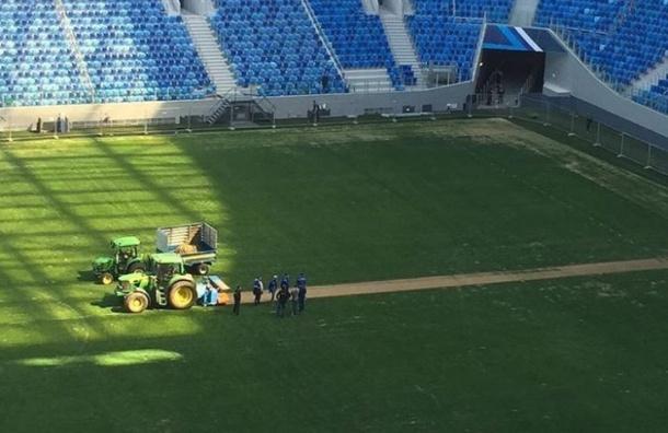 Настадионе «Крестовский» в северной столице навсе 100% снят газон