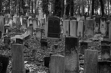 Полтавченко запретил гулять детям попетербургским кладбищам ночью