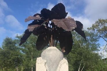 Вместо Ленина наУкране установили памятник свекле