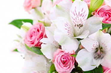 Цветочный магазин в Петербурге заплатит штраф за работу своих грузчиков