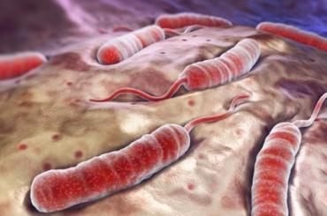 Вспышка холеры зафиксирована в Йемене