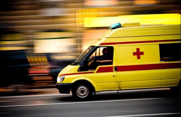 ВПетербурге новорожденную девочку выбросили намусорку