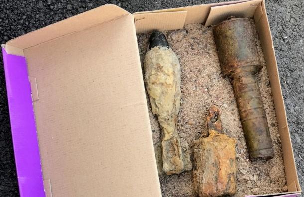 Житель Колпино нашел боеприпас на берегу Малой Ижорки