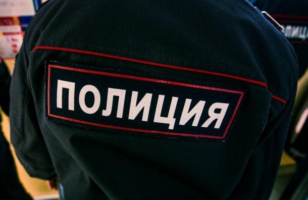 Десять школьников доставили в 15-й отдел полиции Петербурга