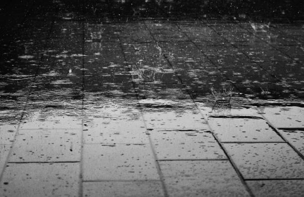 Главный синоптик Петербурга: надо пережить пару дождливых дней