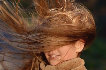 МЧС предупреждает о крепком ветре в Петербурге