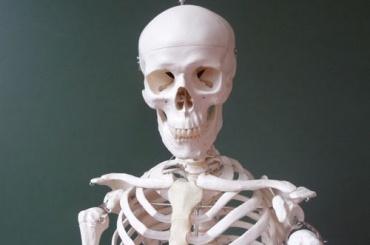 Скелет пропавшего мужчины нашли в Калининском районе