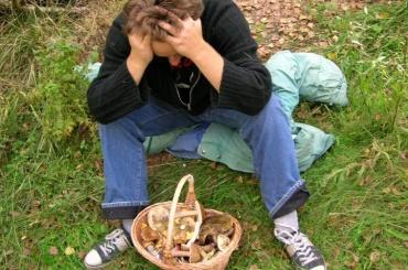 Депутат Четырбок решил развесить таблички в лесу для заблудившихся грибников
