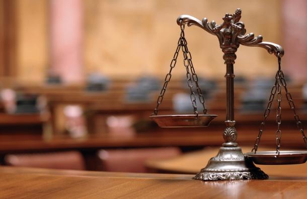 Суд вПетербурге арестовал подозреваемую вубийстве новорожденной внучки