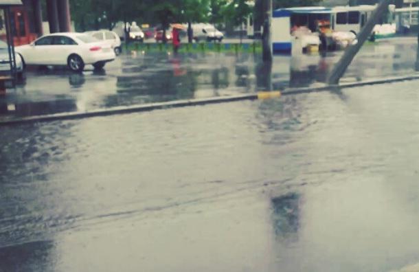 МЧС обещает проливные дожди и туман в Петербурге