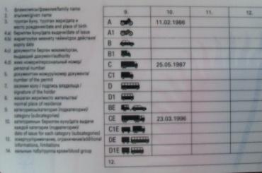 Киргизам в России позволят пользоваться национальными правами
