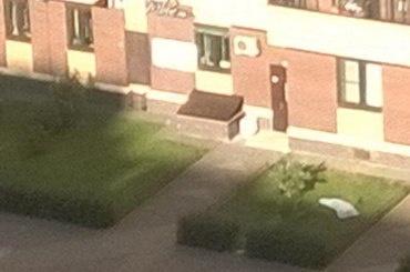 Девушка выпала из окна в Московском районе