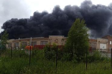 Возгорание в Металлострое локализовали при помощи вертолетов и поезда