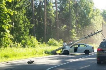 Skoda с упавшим на нее столбом заблокировали движение по Приморскому шоссе