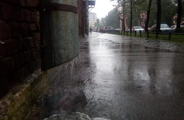 Ливень с грозой накрыл Петербург