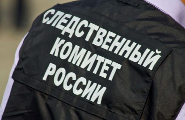 Бастрыкин взял под личный контроль расследование нападения на людей в Сургуте